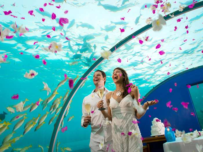 Maldives Wedding Underwater