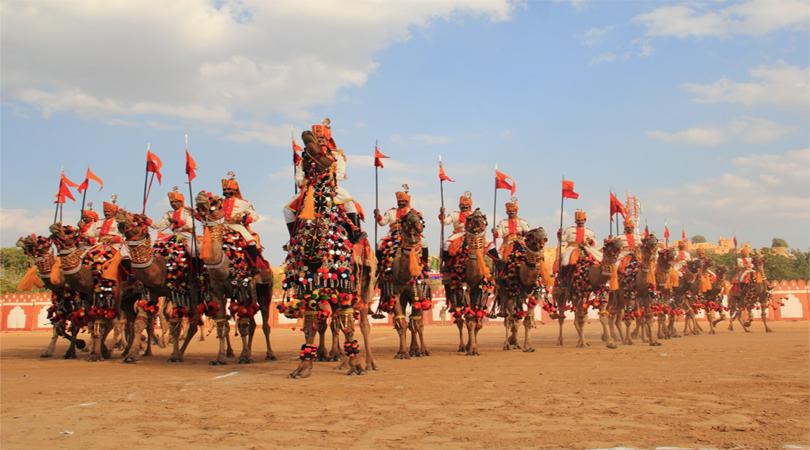 camel festivals