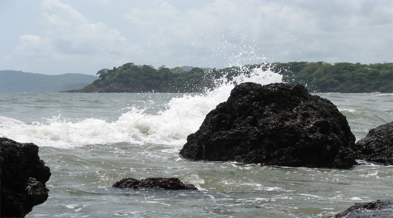 goa talpona beach