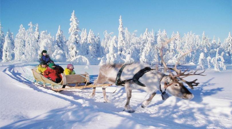 lapland reindeer ride