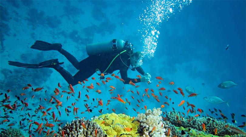 anadaman scuba diving