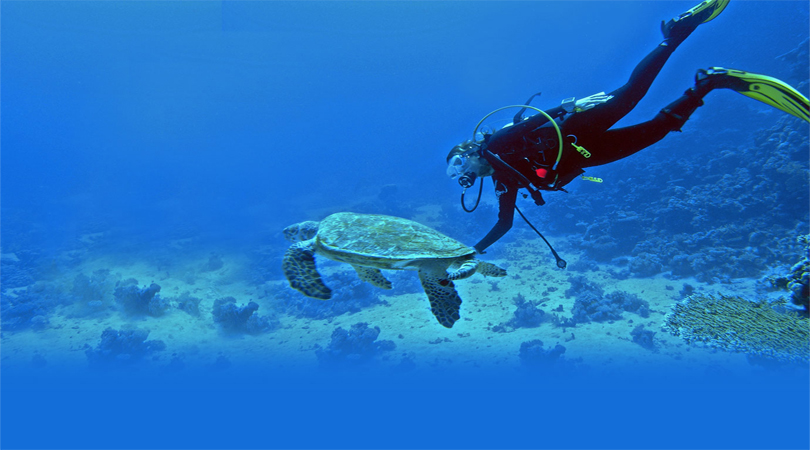 lakshadweep scuba diving