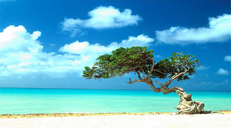 lakshadweep-tour
